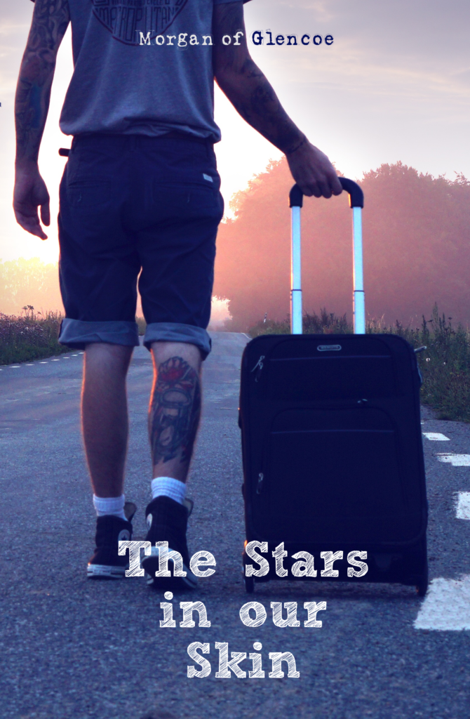 The Stars in our skin cover